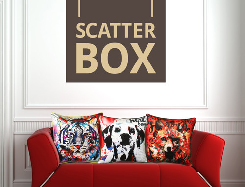 New Cushion Collection from Irish Artist, Paul Delaney